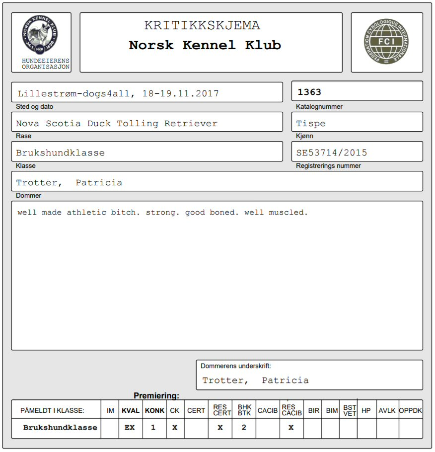 dromma-kritik2-171118