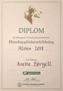 uppf-diplom2017