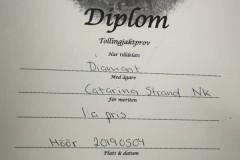 diamant-diplom-190504