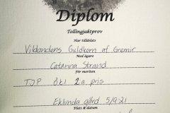 diamant-diplom-210905