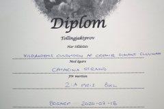 diamant-diplom-okl-200718
