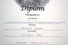 diamant-diplom-okl-200719