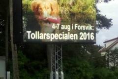 ts-forsvik